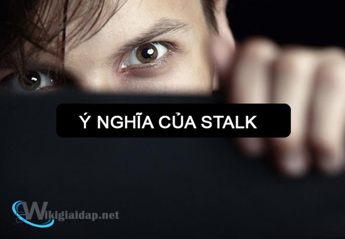 Stalk là gì. ảnh 1