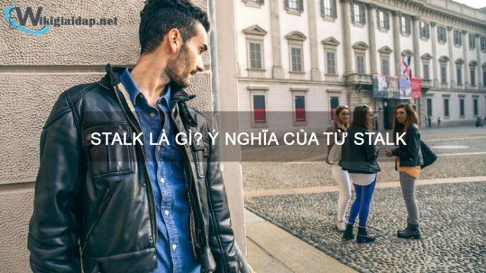Stalk là gì. ảnh đại diện