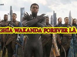wakanda forever là gì. Ảnh bìa