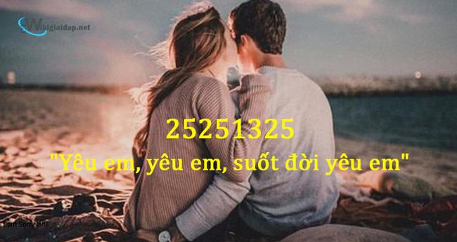 25251325 nghĩa là gì. Ảnh 3