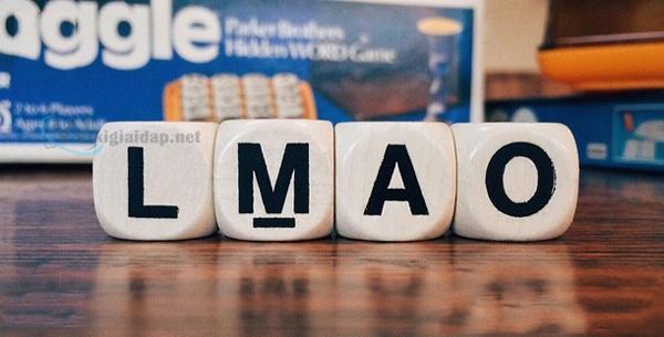 Lmao nghĩa là gì. Ảnh 1