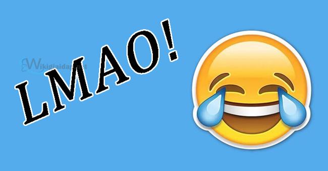 Lmao nghĩa là gì. Ảnh 2