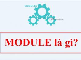 Module là gì. Ảnh bìa