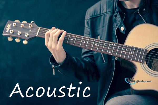 Nhạc acoustic là gì. Ảnh 1