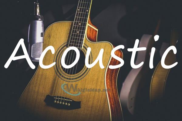 Nhạc acoustic là gì. Ảnh 2