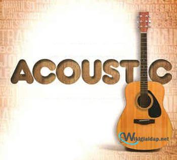 Nhạc acoustic là gì. Ảnh 3