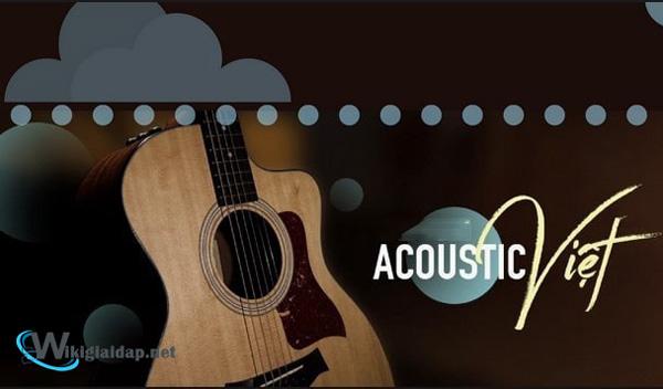 Nhạc acoustic là gì. Ảnh 4